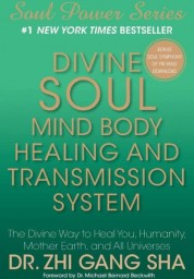 Divine Soul Mind Body Healing and Transmission System