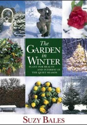 Garden in Winter: Plant for Beauty and Interest in the Quiet Season